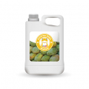Mango Juice Concentrate - MCJ
